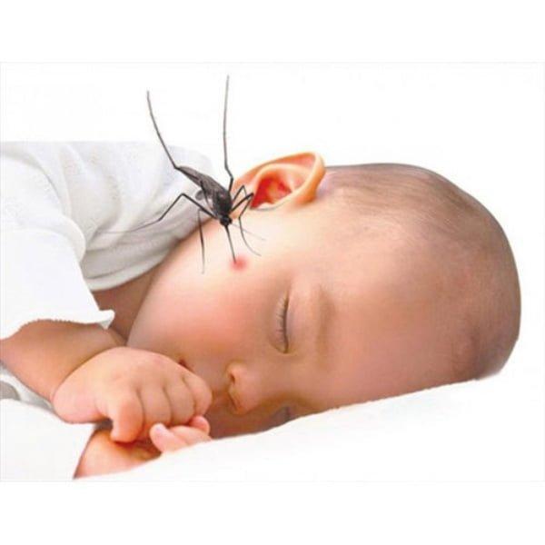Muỗi chích sẽ gây bệnh nguy hiểm cho trẻ